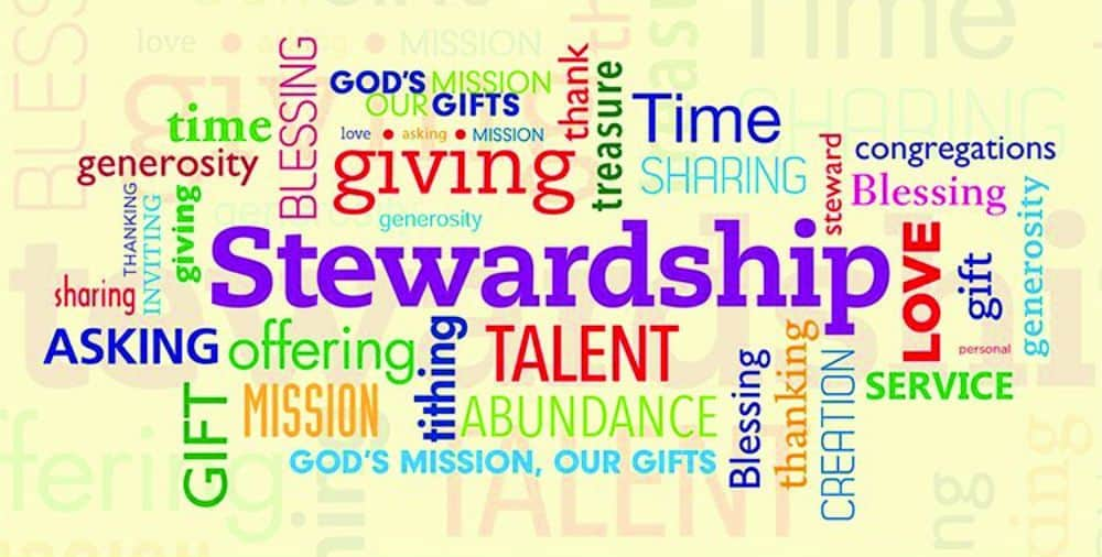 Stewardship bold in word jumble